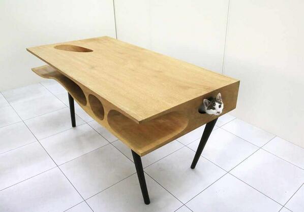 사람과 고양이를 위해 디자인된 테이블