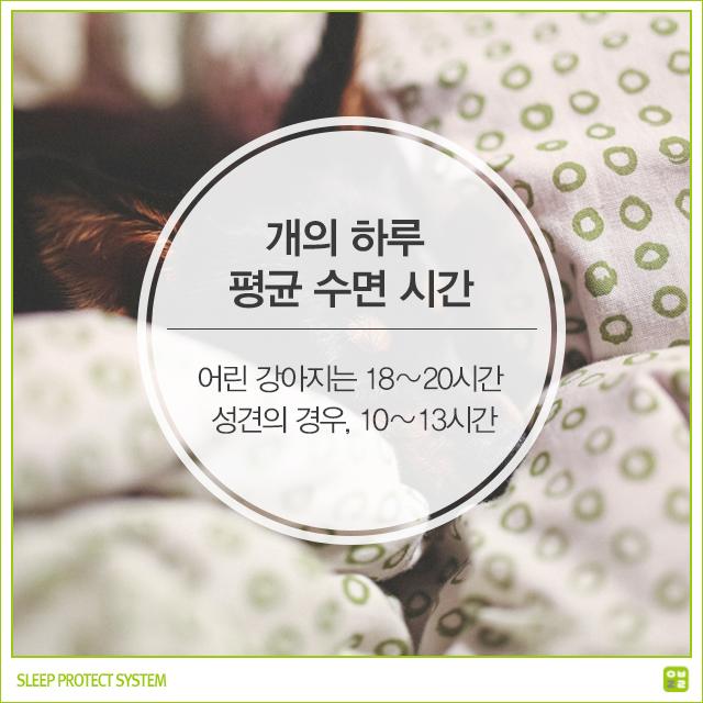 power sleep james maas pdf