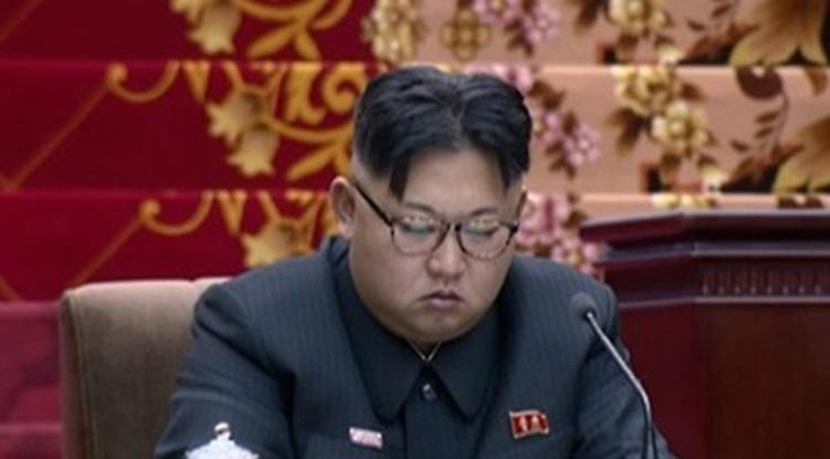 최고인민회의서 졸고 있는 김정은 모습