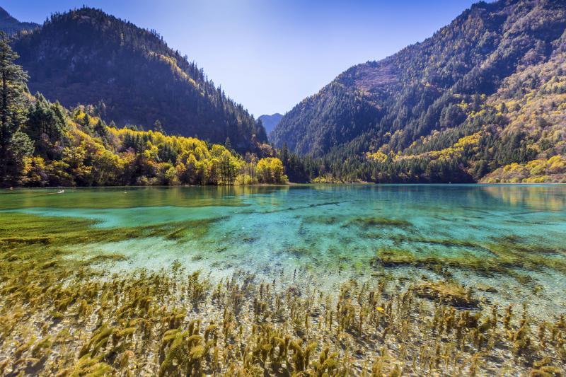 Wikitree top5 for Foto paesaggi naturali gratis