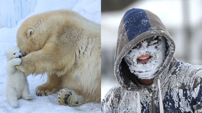 """기상 전문가 """"올 겨울 추위, 지구 온난화 때문"""""""